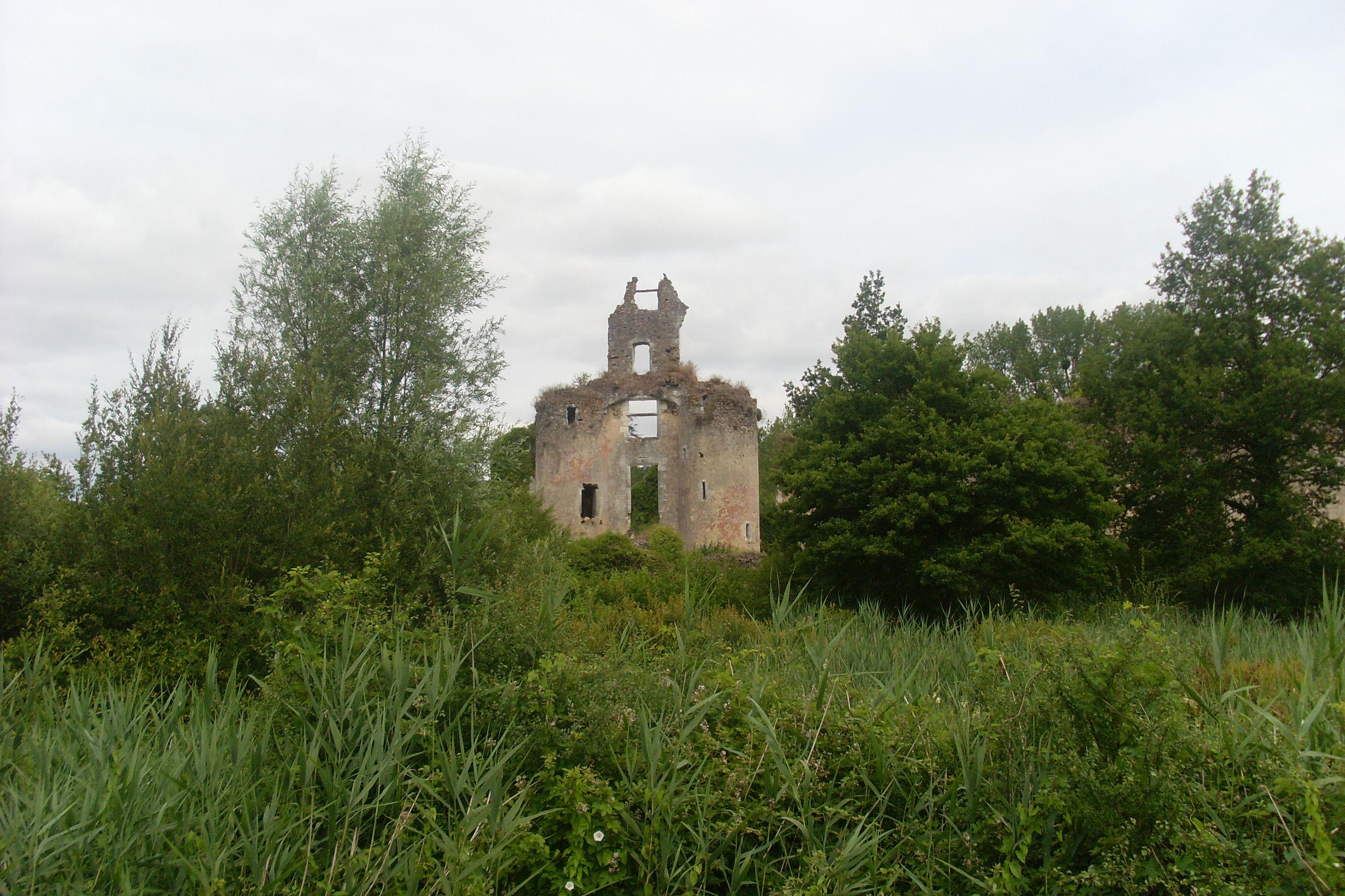 chateau-la-valliere_ruines_du_chateau_de_vaujours_vue_generale